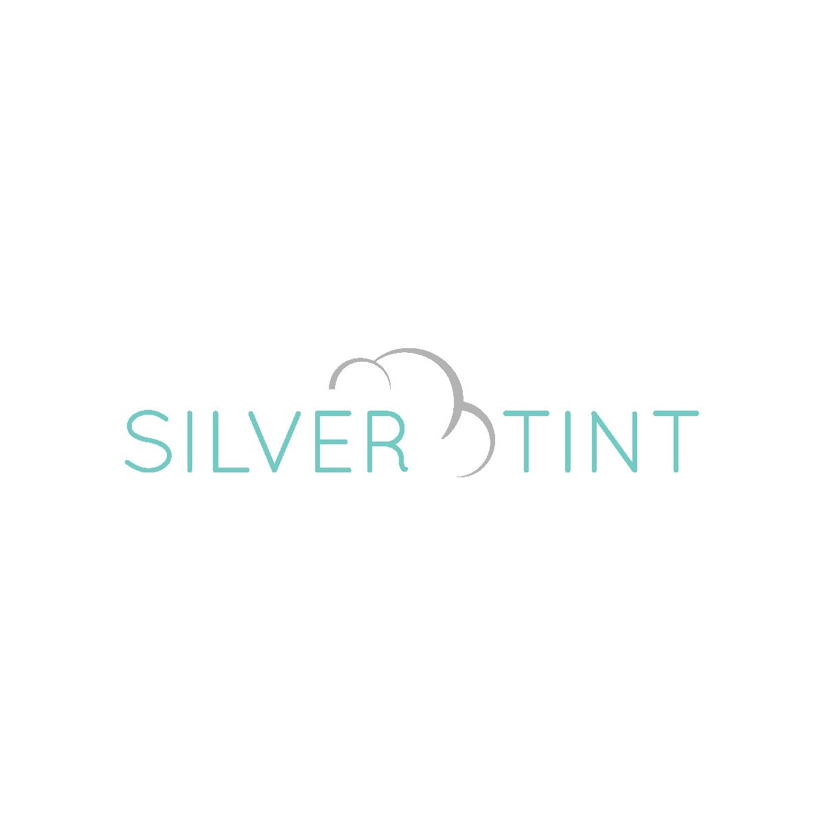 silver-tint-01